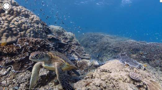 Google maps under sea techinfo google has partnered with the catlin seaview survey a major scientific study of the worlds reefs to make the images available to users of google maps gumiabroncs Images