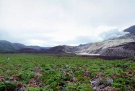 Google Maps to offer panoramic images of The Galapagos Islands