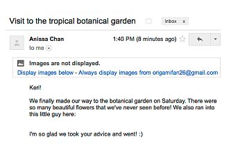 Gmail to automatically display images in messages